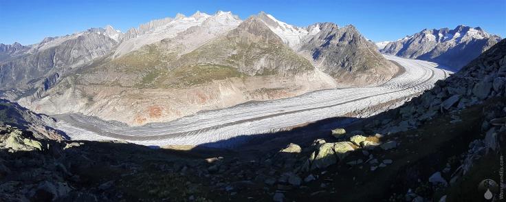 #Panorama Gletscher Aletsch Mittelaletsch