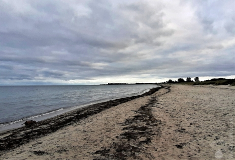 Dauergrau am Ostseestrand bei Pottloch.