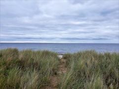 Der Strandabschnitt sieht allerdings ganz nett aus.