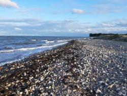 Strand der tausen bunten Feuersteine. Jeder mit seinem eigenen Schatten.