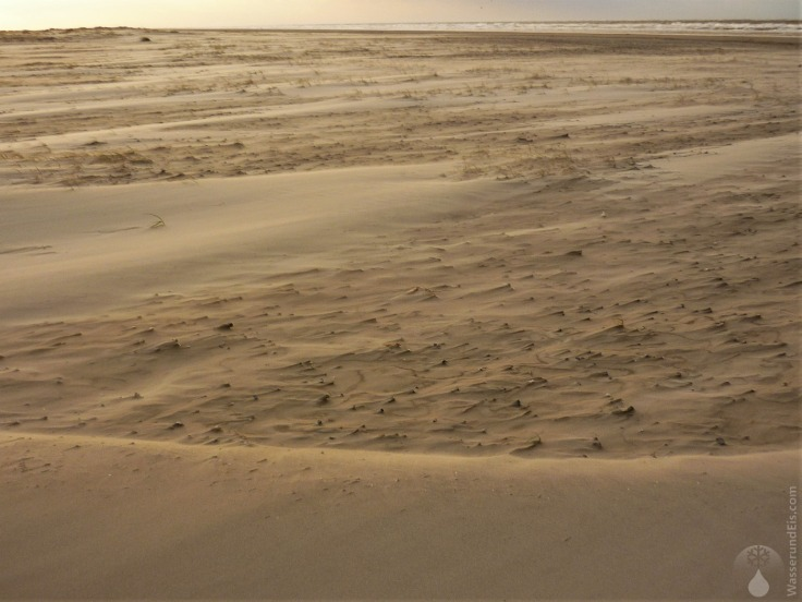 #Sanddünen Schiermonnikoog Oktober 2009