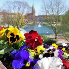 #Bremerhaven Holzhafen Frühling 2020