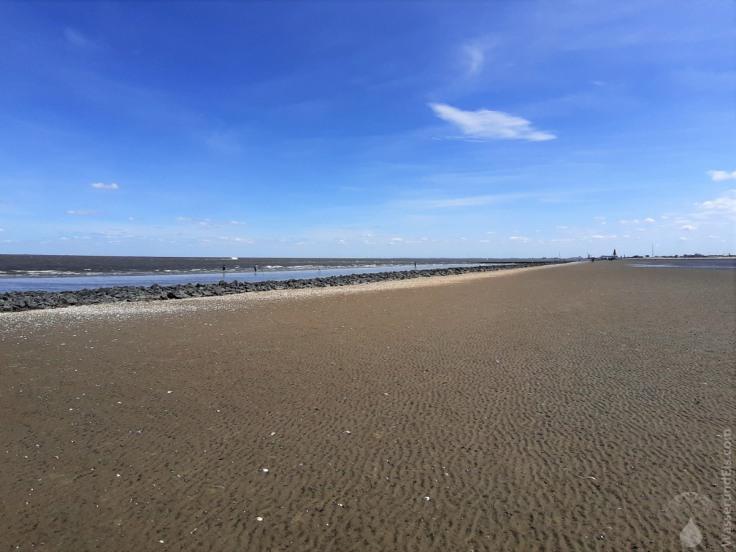 #Leitdamm Elbe Wattenmeer 2020