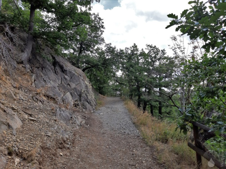 Aufstieg zum Burgberg am Südhang, was den Aufstieg im Sommer schweißtreibend macht.