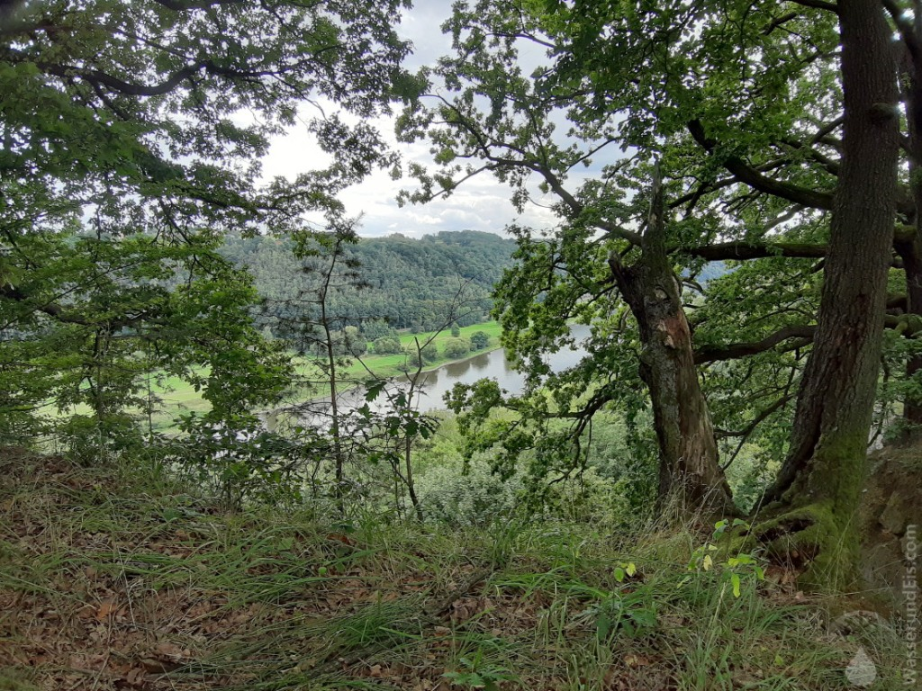 Der Rückweg von der Wilke-Aussicht zurück nach Wehlen verläuft teils direkt am oberen Rand der Klippen.