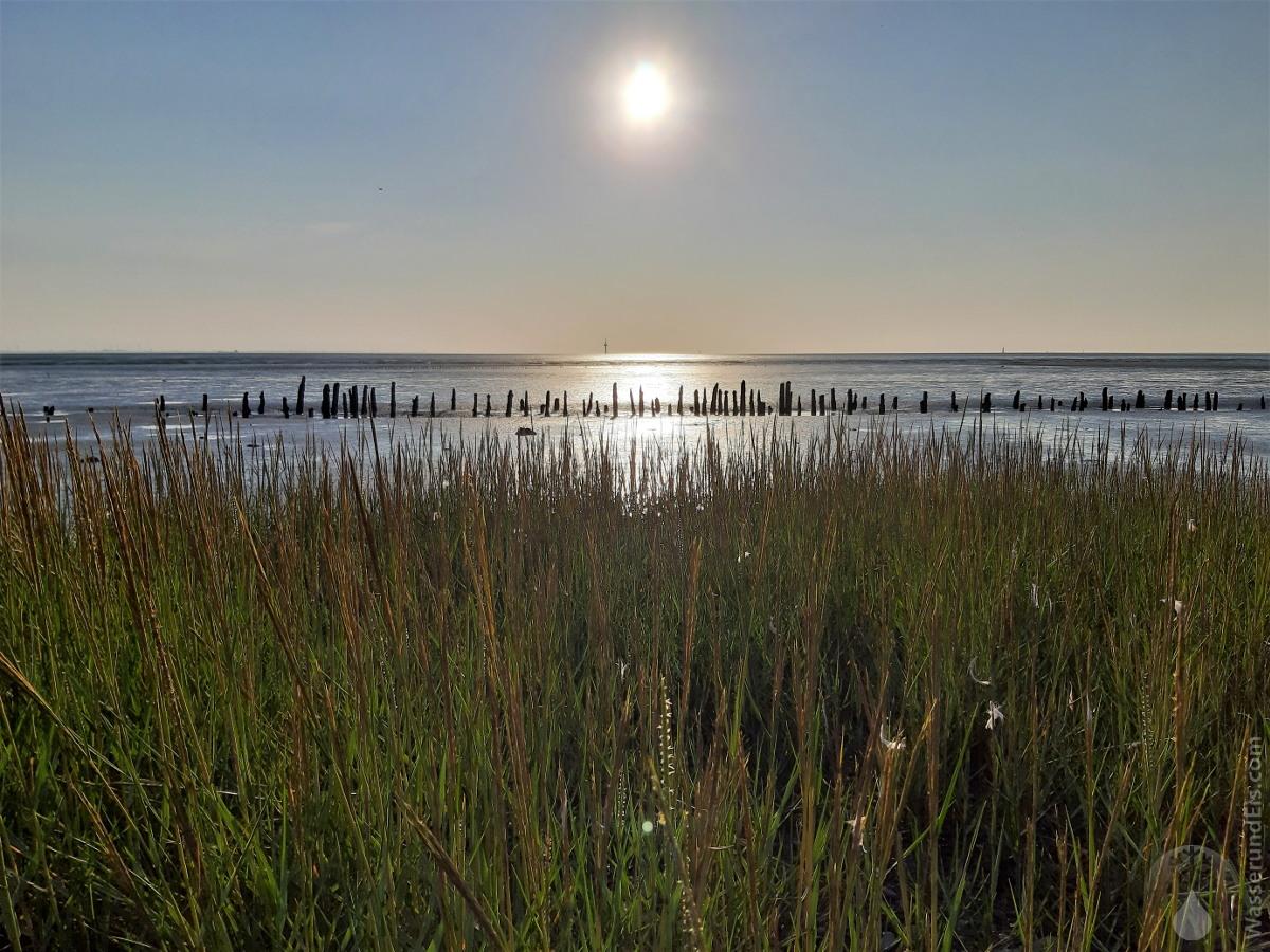 Wattenmeer an der Wurster Nordseeküste